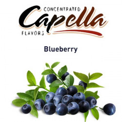 Blueberry Capella