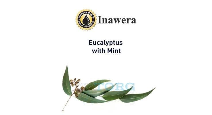 Ароматизатор Inawera Eucalyptus + Mint