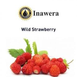 Wild Strawberry Inawera