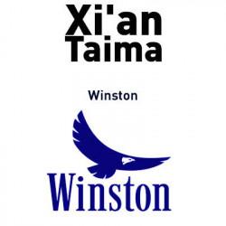 Winston Xian Taima