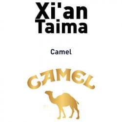 Camel Xian Taima