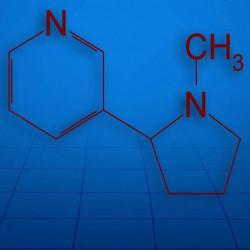 "Основа ""Сотка"" Vaprobionic NS200 Salt"