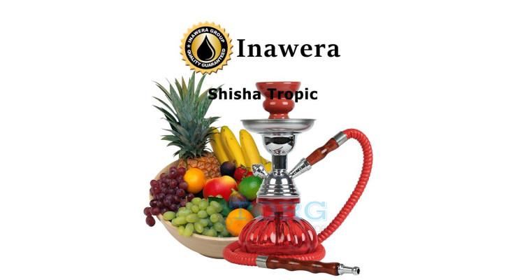 Ароматизатор Inawera Shisha Tropic