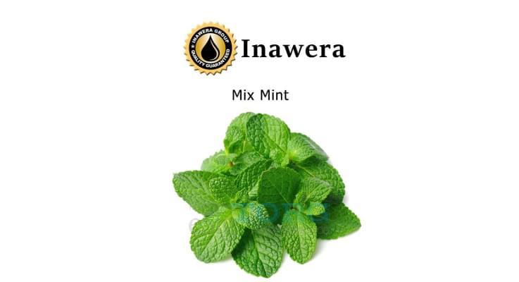 Ароматизатор Inawera Mix Mint