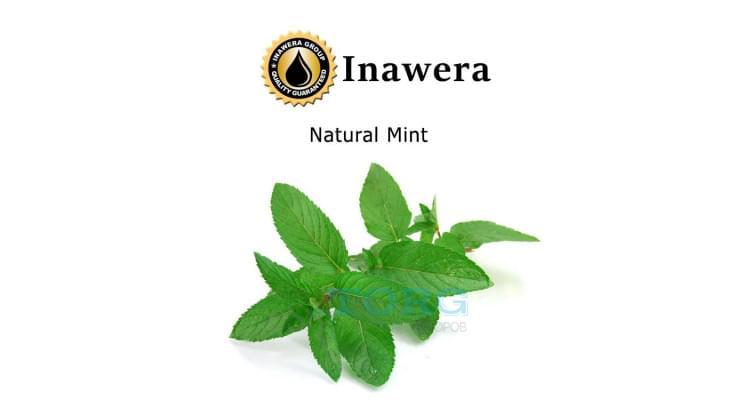 Ароматизатор Inawera Natural Mint