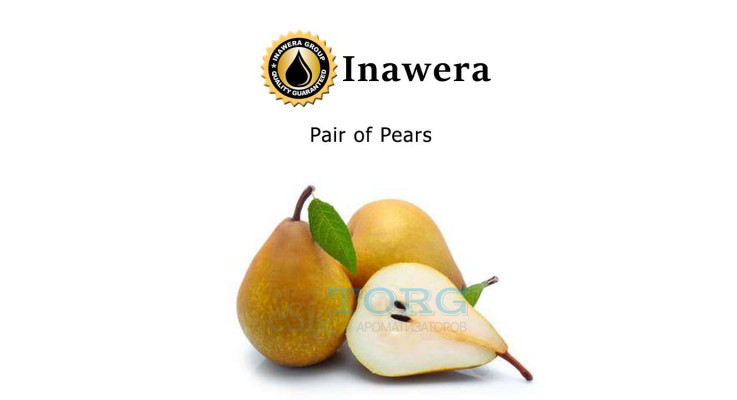 Ароматизатор Inawera Pair of Pears