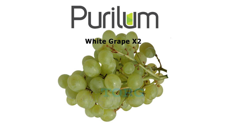 Ароматизатор Purilum White Grape X2
