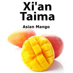 Asian Mango Xian Taima