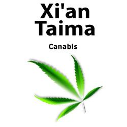Canabis Xian Taima