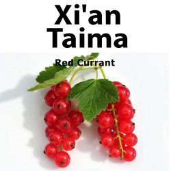 Red Currant Xian Taima